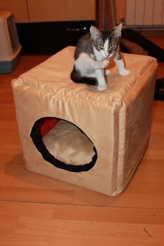 3 in 1 box, designed specifically for cats or small dogs, it turns in bed or armchair. It's a cube with sides of 40 cm, made of 3 cm thick sponge, the cover is removable due to the zippers and washable at 30 °C.The cushion is stuffed with siliconised puff.