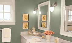 or maybe this for the bathroom... Meadow by Eddie Bauer, Valspar.
