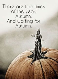 I hope everyone enjoyed the first day of Fall! I can't believe how fast the time is flying by! Take the time to enjoy this season because before we know it's going to be Halloween!