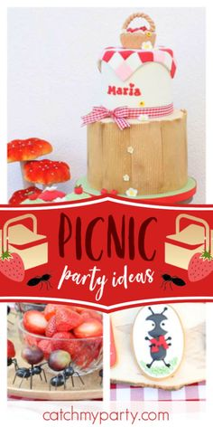 Picnic Birthday, Summer Birthday, Third Birthday, Girls Birthday Party Themes, Birthday Parties, Summer Picnic, Garden Picnic, Beach Picnic, Summer Parties