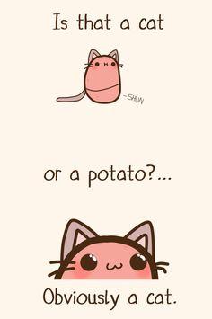 Definitely a cat XD