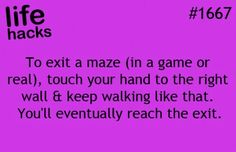 (in a game, real or maiz maze)