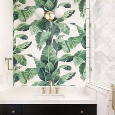 Lulu & Georgia Pacifico Palm Wallpaper by Nathan Turner, Ivory - Bathroom - Yorgo Coastal Wallpaper, Palm Leaf Wallpaper, Botanical Wallpaper, Print Wallpaper, Powder Room Wallpaper, Bathroom Wallpaper, Wallpaper Collection, Eco Friendly Paper, Wood Panel Walls