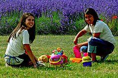 Our #UPickgirls at #LavenderDAZEFestival