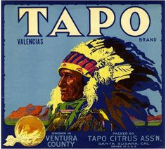 Santa Susana Tapo Indian Orange Citrus Fruit Crate Box Label Advertising Art Print