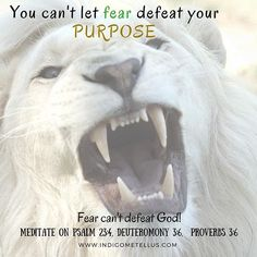 I don't know about you. But #FEAR will no longer be a factor in my purpose. With…