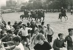 123 people were injured and 90 arrests made when police and striking miners clashed at the Orgreave coking plant in the biggest flashpoint of the miners' strike. Hillsborough Disaster, University Of Sheffield, Owen Jones, Liverpool Fans, Riot Police, South Yorkshire, Horses And Dogs, Theresa May, Image Caption