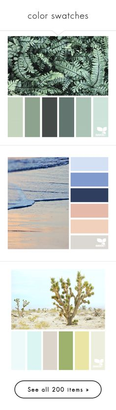 """""""color swatches"""" by ladydivaboss ❤ liked on Polyvore featuring backgrounds, design seeds, pantone, colors, filler, pictures, seeds, colours, home and children's room"""