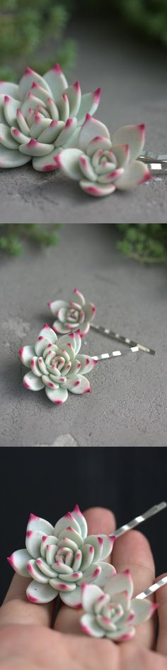 Succulent hair pins from@EtenIren #succulents #succulent #succulove #hair #hairpins #succulenthair