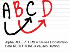 Alpha v beta receptors of the nervous system