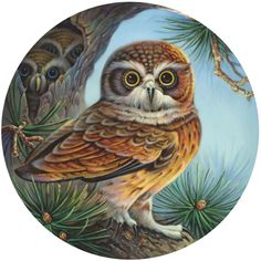 Bits and Pieces - 500 Piece Round Jigsaw Puzzle for Adults - Owl and Chicks - 500 pc Owl and Owlets in a Pine Tree Round Jigsaw by Artist Oleg Gavrilov Owl Graphic, Cool Wall Art, Gifts For Nature Lovers, Owl Bird, Christmas Scenes, Bird Pictures, Jigsaw Puzzles, Birds, Artist