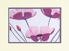 Magenta Pink Poppies by Faye Giblin