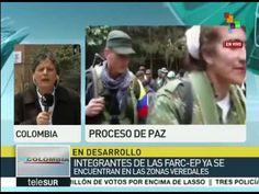 Colombia: más de 6 mil 900 guerrilleros, listos para dejación de armas