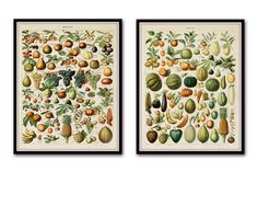 VINTAGE FRENCH FRUITS GICLEE CANVAS PRINT SETThese two charming French fruit illustrations have been adapted from an antique text and...