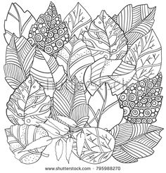 Floral doodle background pattern in vector with autumn leaves. Design Asian, ethnic, zentangle, tribal pattern. Black and white. Coloring book. Monochrome.
