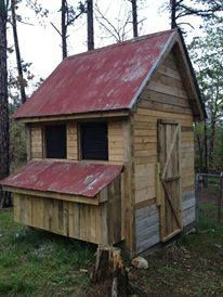 Jill Stice's son and husband built this structure two years ago with pallets and scrap lumber. The tin came off a barn. Chicken Coop Decor, Easy Chicken Coop, Chicken Coup, Backyard Chicken Coops, Chicken Coop Plans, Building A Chicken Coop, Chickens Backyard, Farm Chicken, Clean Chicken