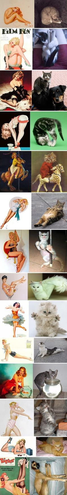 Cats and Pinup models...    L to the O to the L!