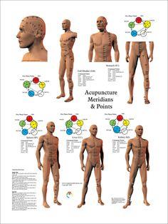 AcupuncturePosterPT11002B__56287.1417530363.1280.1280.jpg (961×1280)
