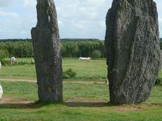 Cheveaux cul-à-cul entre deux menhirs à Saint-Just (35)