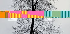 countune.com | 2014,12,23 | Background: Gerd Jansen