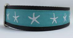 Starfish Turquoise 1.5 adjustable dog collar by WagSwagPetSupplies