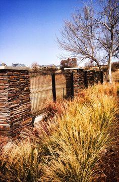 Natural grassland recreated in Eco estate
