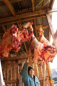 #LostSkills - How to Butcher a Cow or Beef #Butchering