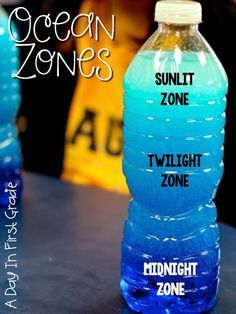 Ocean Zone discovery bottles- fill the bottle with 1/4 water (with blue food coloring) and 3/4 vegetable oil. After the students shake them up, they will notice three distinct areas in their bottle as the oil and water settle. {This is perfect for teaching the zones in the ocean!}