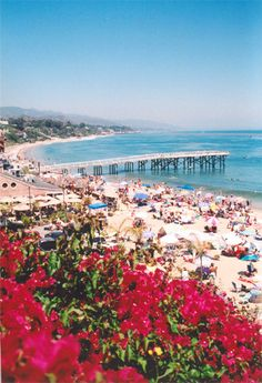 Paradise Cove. 28128 Pacific Coast Hwy Malibu, CA 90265, US. Rehearsal Lunch/Dinner, Res.