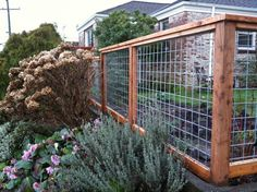 Eco Friendly Garden Fences Ideas : Pink Roses Green Lawn Brick House Wire And Wood Garden Fences Ideas