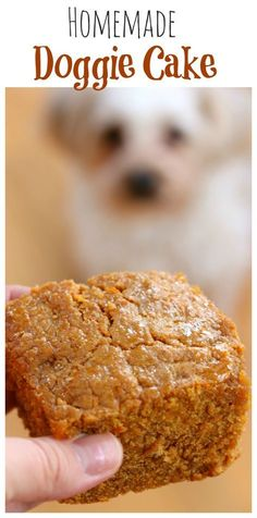 A tasty blend of peanut butter, honey and carrots will make this cake your furry friend's favorite treat! #dogfood