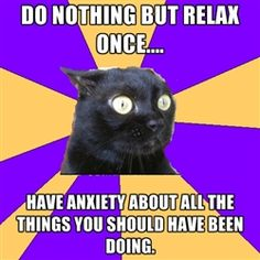 Anxiety Cat - Do nothing but relax once.... have anxiety about all the things you should have been doing.