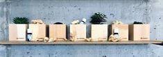 Raumduft Zirbe – nussbag Floating Shelves, Modern, Design, Home Decor, Relaxing Room, Rustic, Ad Home, Timber Wood, Trendy Tree