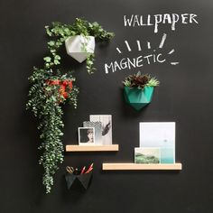 Chalkboard magnetic wallpaper: writable with soft chalks, easy to hang and clean. This magnetic wallpaper with chalk finish is fun to hang drawings, pictures and notes with powerful magnets. Design Shop, Coffee Shop Design, Home Organisation Tips, Home Photo Studio, Office Space Decor, Chalk Wall, Coffee Nook, Wine Display, Chalk Markers