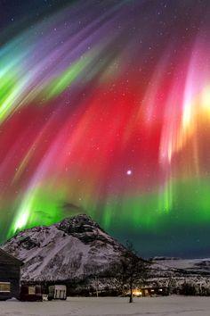 "vividessentials: ""Aurora | vividessentials """