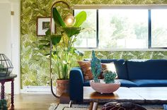 A Jungle-Inspired Wine Country Home in Constant Rotation — House Tour