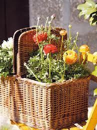 ideas plantas - Buscar con Google  q buena idea:)