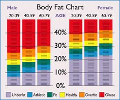 How To Calculate Body Fat Percentage  Would you like to know how to calculate your body fat percentage? When most of us think about about losing weight, the amount of fat you are carrying around is actually much more important than weight.