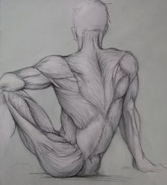 Google Image Result for http://www.deviantart.com/download/96437263/back_anatomy___drawing_by_ceruleanvii.jpg