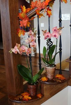 Stunning orchids can add that something special to your holiday decor, just about anywhere! If this is your favorite holiday-themed image, pin for your chance to win free #JustAddIceOrchids for a year! Enter here: www.facebook.com/justaddiceorchids