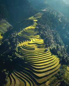 Rice fields in Vietnam Drone Photography, Landscape Photography, Nature Photography, Travel Photography, Lifestyle Photography, Vietnam Voyage, Vietnam Travel, Sa Pa Vietnam, Amazing Nature