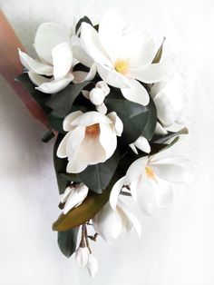 Magnolia pendant bouquet (wider than a teardrop). Generous use of magnolia leaves sets off these stunning flowers naturally. By https://www.loveflowers.com.au