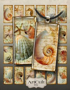 NAUTILUS - Digital Collage Sheet 1x2 inch size images for rectangle or domino Pendants Printable download for jewelry, scrapbook, paper