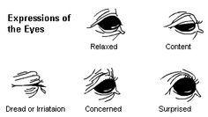Communication of the eyes Horse Running Drawing, Horse Color Chart, Horse Behavior, Horse Anatomy, Horse Facts, Horse Camp, Horse Costumes, Horse Tips, Horse Training
