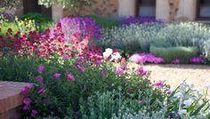 Jardín patio Toledo. Abril 2011-4
