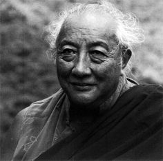 Brilliant Moon  The Life of Dilgo Khyentse Rinpoche