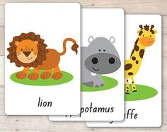 Popular items for animal flash card on Etsy
