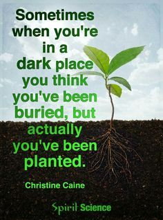 sometimes when you are in a dark place - Google Search