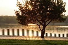 Reurbanização da orla do lago Paprocany,© Tomasz Zakrzewski Front Yard Fence, Farm Fence, Fenced In Yard, Horse Fence, Rustic Fence, Fence Art, Fence Landscaping, Backyard Fences, Garden Fencing