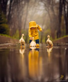 Making memories in her yellow raincoat with her yellow duck friends in the rain So cute! So adorable! Animals And Pets, Baby Animals, Cute Animals, Cute Pictures, Beautiful Pictures, Amazing Photos, Beautiful Things, Foto Baby, Jolie Photo